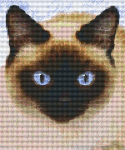 806155 Pixelhobby Set Siamkatze 2 mit 6 Platten