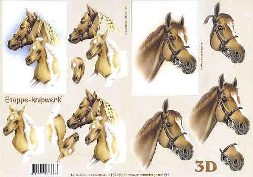Motivbogen Pferde