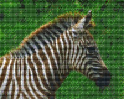 px804116_Pixelset-Zebra-3