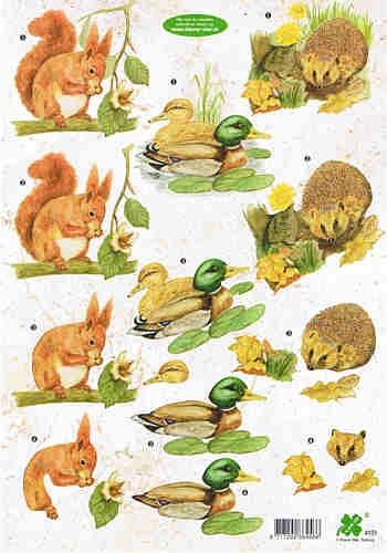 Motivbogen Eichhörnchen, Wildente