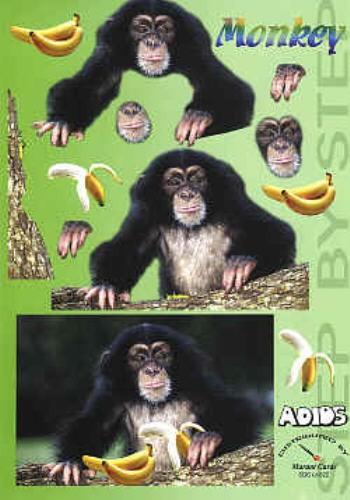 Motivbogen Monkey
