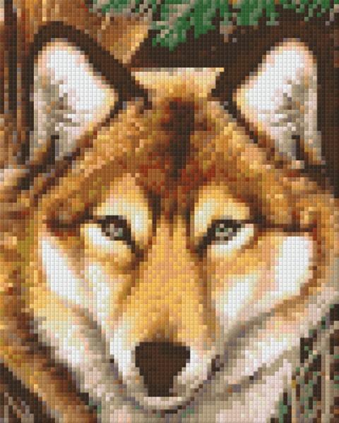 Set Wolf 1