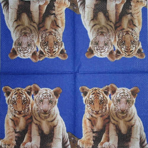 Serviette Tigerbabies