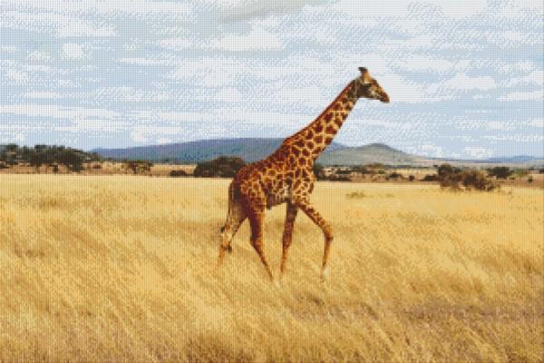 Set Giraffe 3