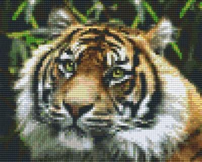 Set Tiger 3