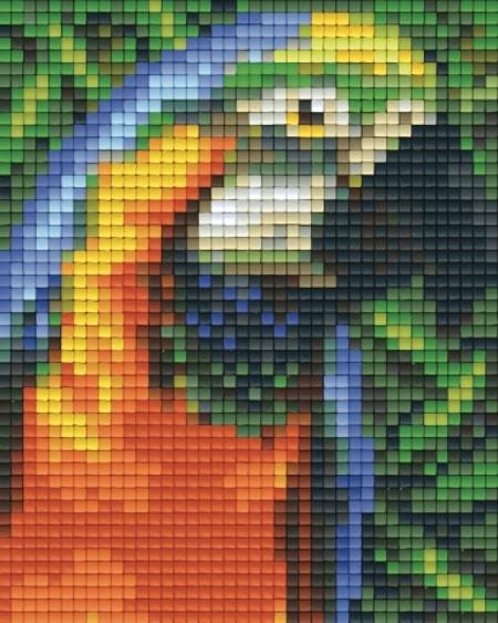 Set Papagei