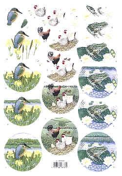 Motivbogen Eisvogel Hahn Frosch