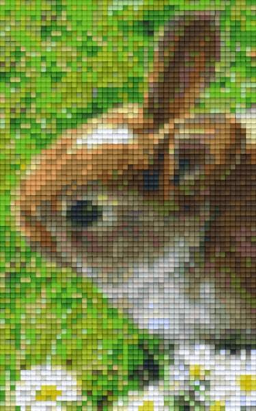 px802098_Pixelset-Hase-5