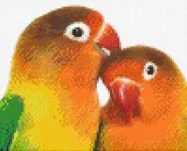 Set Zwei Papageien