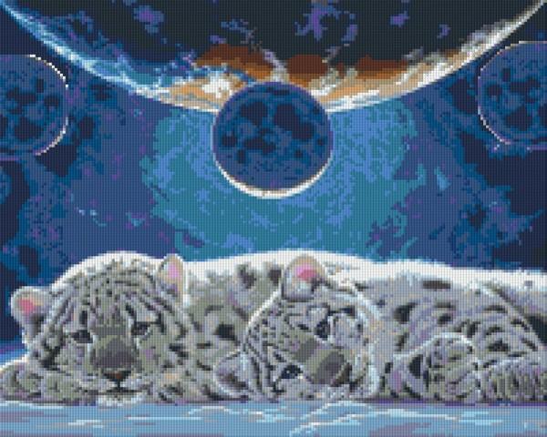 Set Weiße Tigerbabys