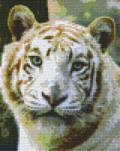 px804188_Pixelset-Tiger-weiß