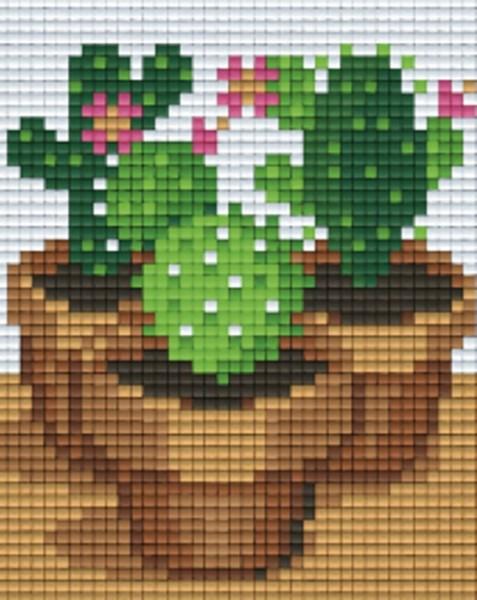 801443_Pixelset-Kakteen