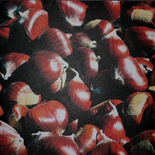 Scrapbook-Blatt Kastanien