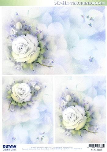 Hintergrundbogen White Roses