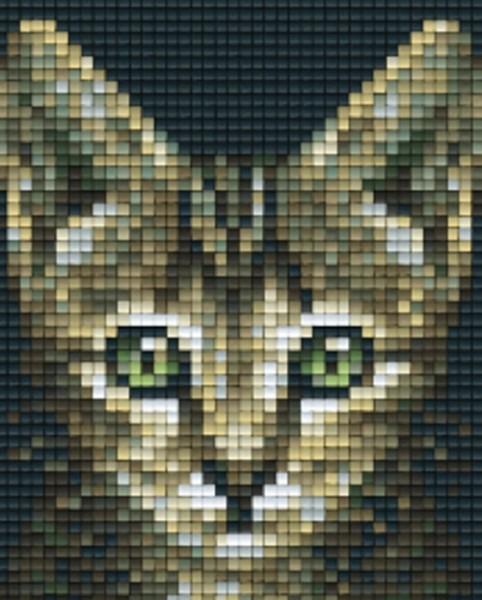 801456_Pixelset-Katzenblick-6