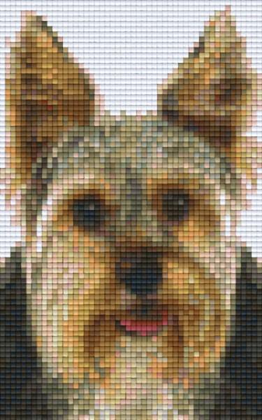 px802094_Pixelset-Hündchen-9