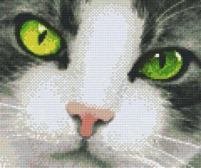 px806141_Pixelset-Katze-mit-grünen-Augen