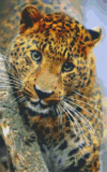 px808081_Pixelset-Leopard-6