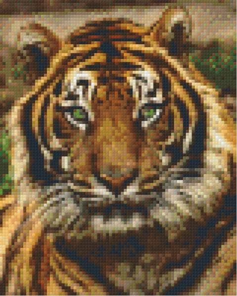Set Tiger 1