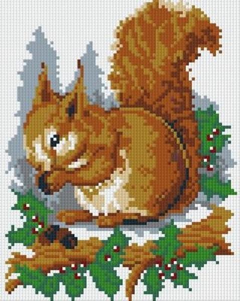 Set Eichhörnchen 3