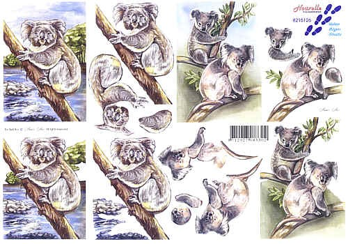 Motivbogen Koala