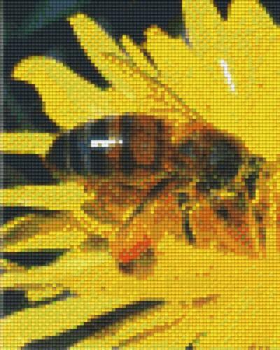 px804044_Pixelset-Honigbiene