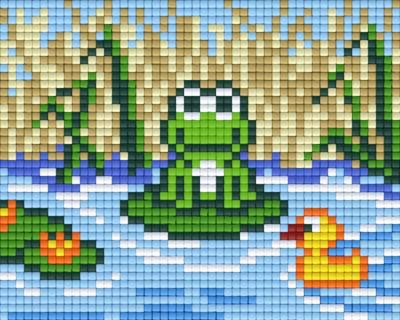Set Frosch am Wasser