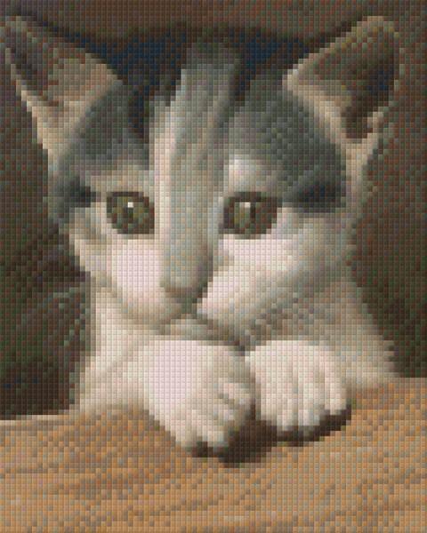 Set Katze 2