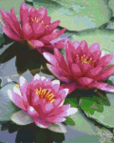 809306_Pixelset-Seerosen