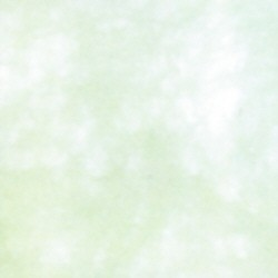 Uni-Vlies lindgrün
