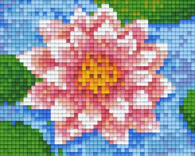 801338_Pixel-Set-Seerose