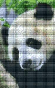 Set Pandabär