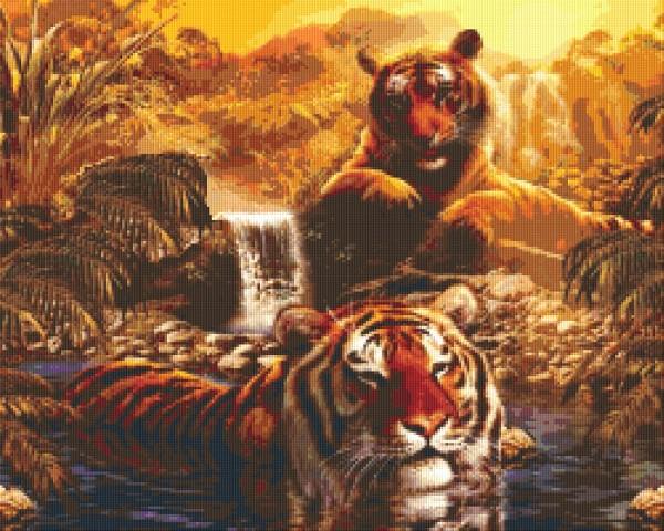Set Tiger 2