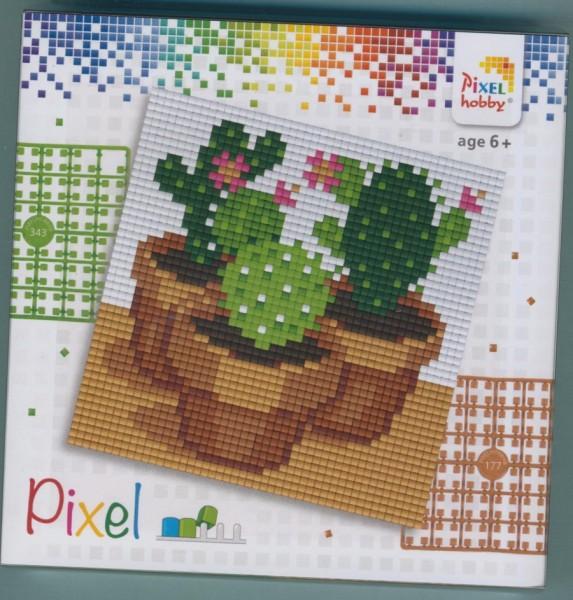 px44009_Pixelset-4-kleine-Basisplatten-Kaktus