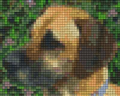 801186_Pixelset-Dackel-3