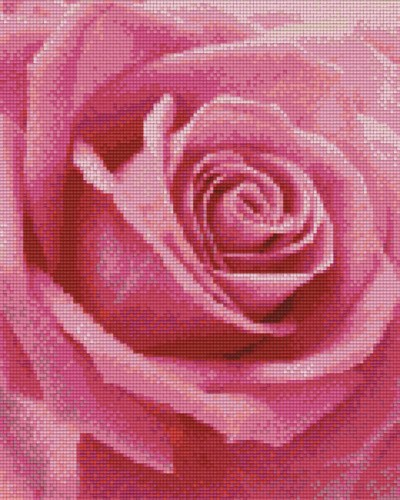 809372_Pixelset-Rose-3