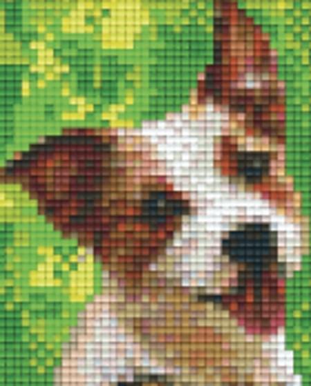 Set Hund 8