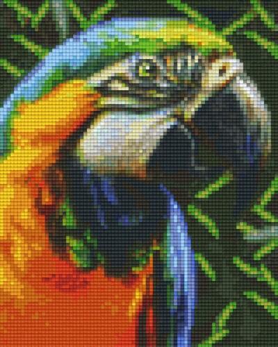 px804465_Pixelset-Papagei-3