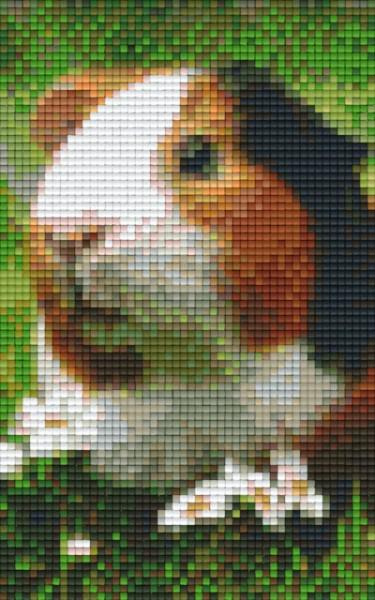 px802099_Pixelset-Meerschweinchen-2