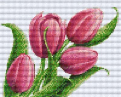 px804455_Pixelset-Tulpen-4