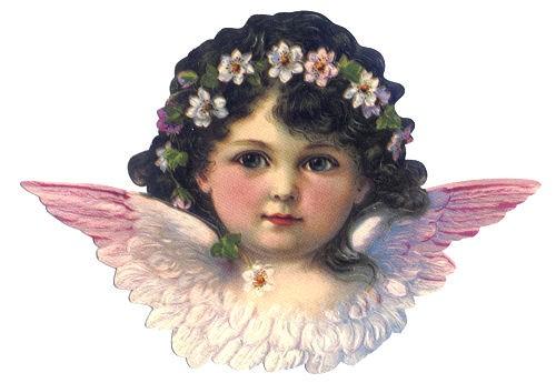 Poesiebild Engels-Gesicht rosa 11x16cm