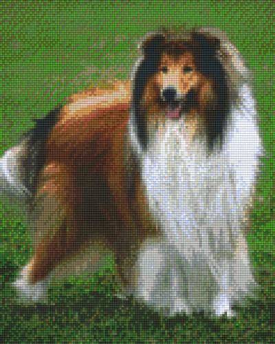809275_Pixelset-Shetland-Hund