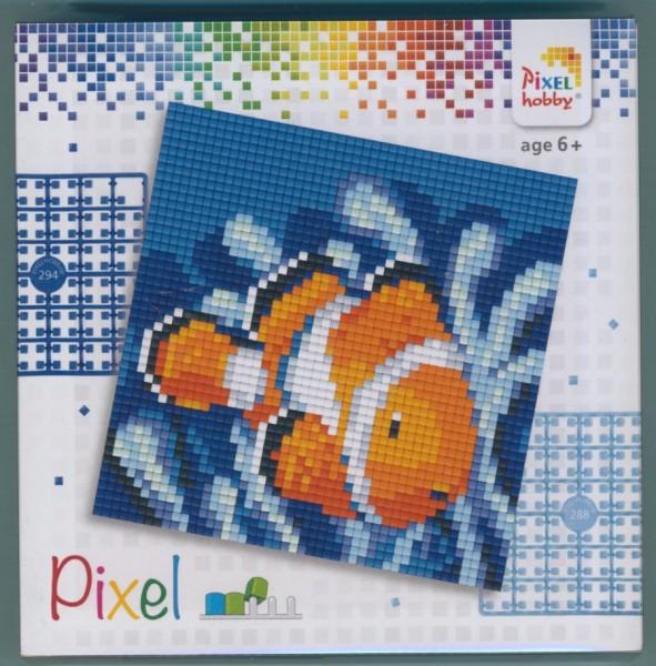 px44004_Pixelset-4-kleine-Basisplatten-Clownfisch