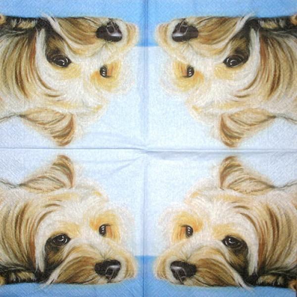 Serviette Dösender Hund