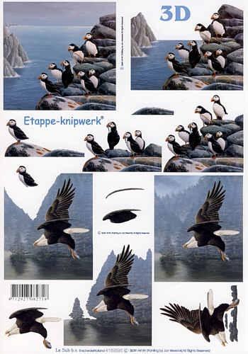 Motivbogen Nordmeervögel