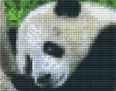 Set Panda 2