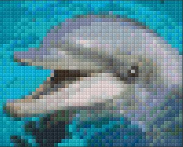 Set Delfin 1