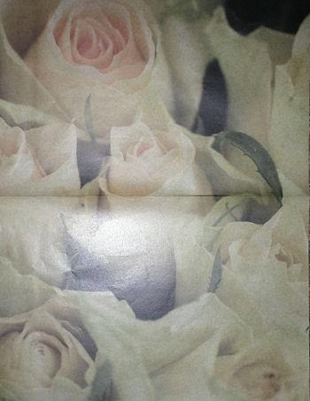 Decoupagebogen Yellow Roses