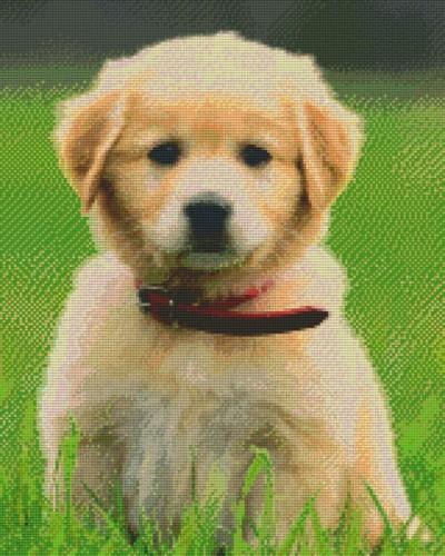 px816192_Pixelset-Hund-Welpe-2