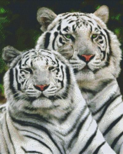 px816111_Pixelset-weiße-Tiger
